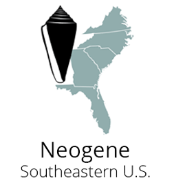 Logo for the Neogene Atlas of Ancient Life Fossils Paleontology