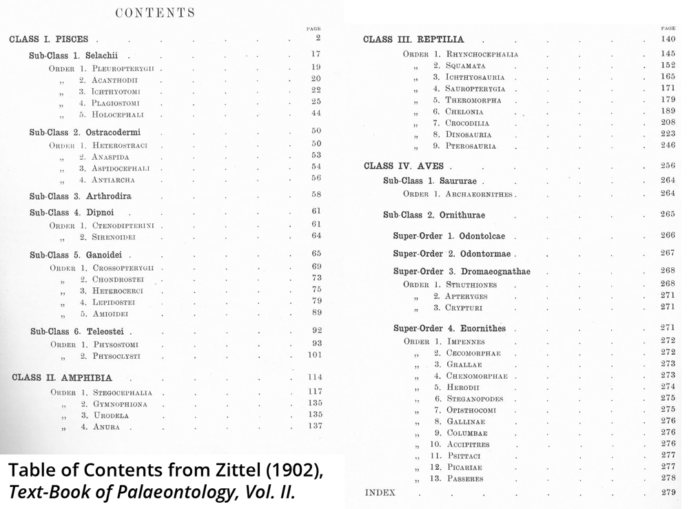 Table of contents from a 1902 paleontology textbook. Contents show reptiles as a class distinct from birds.