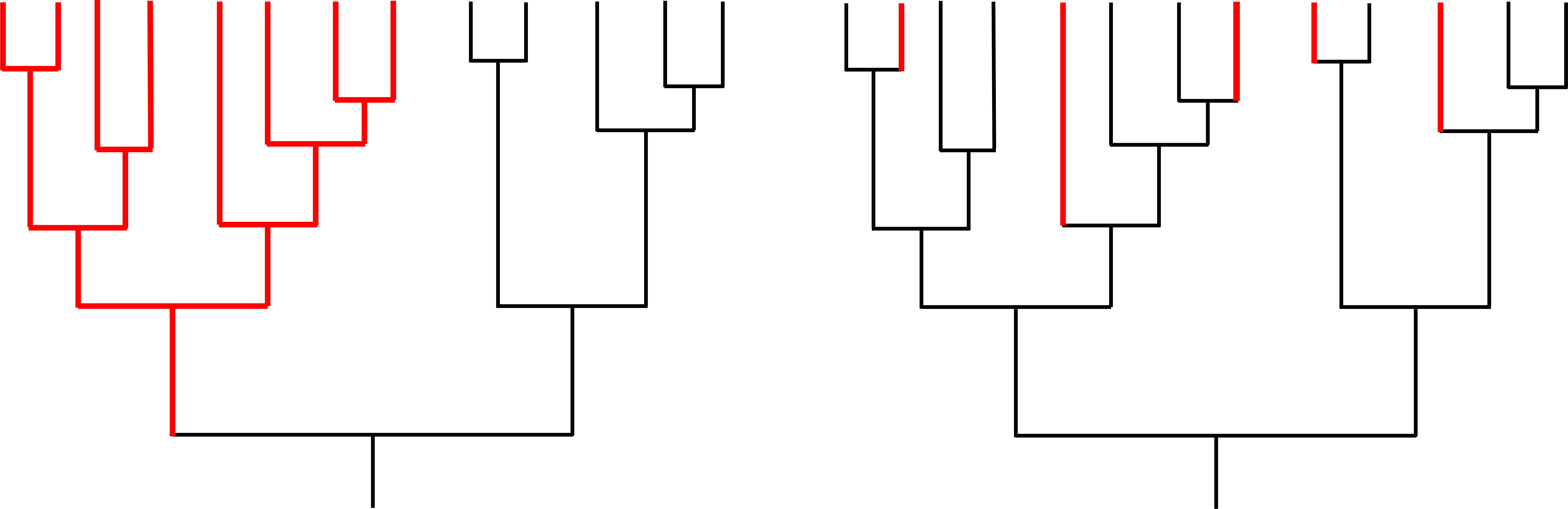 Two hypothetical examples of diversification in a group of closely related species. Black indicates presence of the ancestral condition (e.g., planktotrophic development); red indicates presence of a derived condition (e.g., nonplanktotrophic development). In the example on the left, the origin of the derived condition has caused an increased rate of speciation within a single clade, providing evidence for species selection. In the example on the right, the derived condition has originated multiple times, but there is no evidence that the origin of the trait has increased the speciation rate; therefore, there is not any evidence for species selection. Image based in part on fig. 1 in Duda and Palumbi (1999).