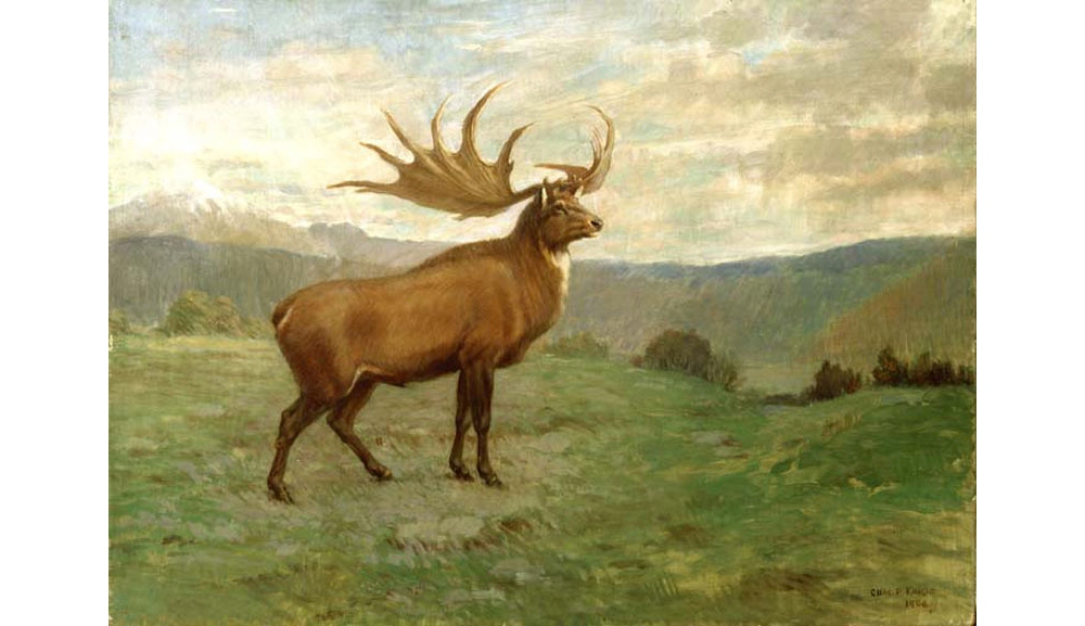 Painting of an Irish Elk by Charles Knight.