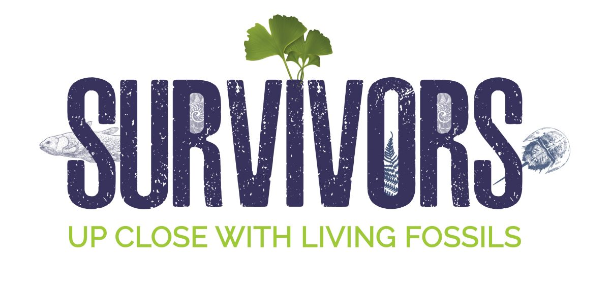 Logo for Living Fossils exhibit