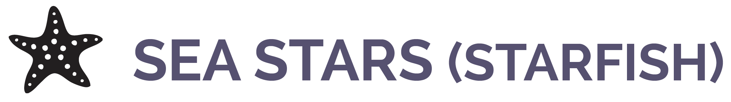 "Image shows the words ""Sea Stars (Starfish)"" and shows a cartoon of a sea star."