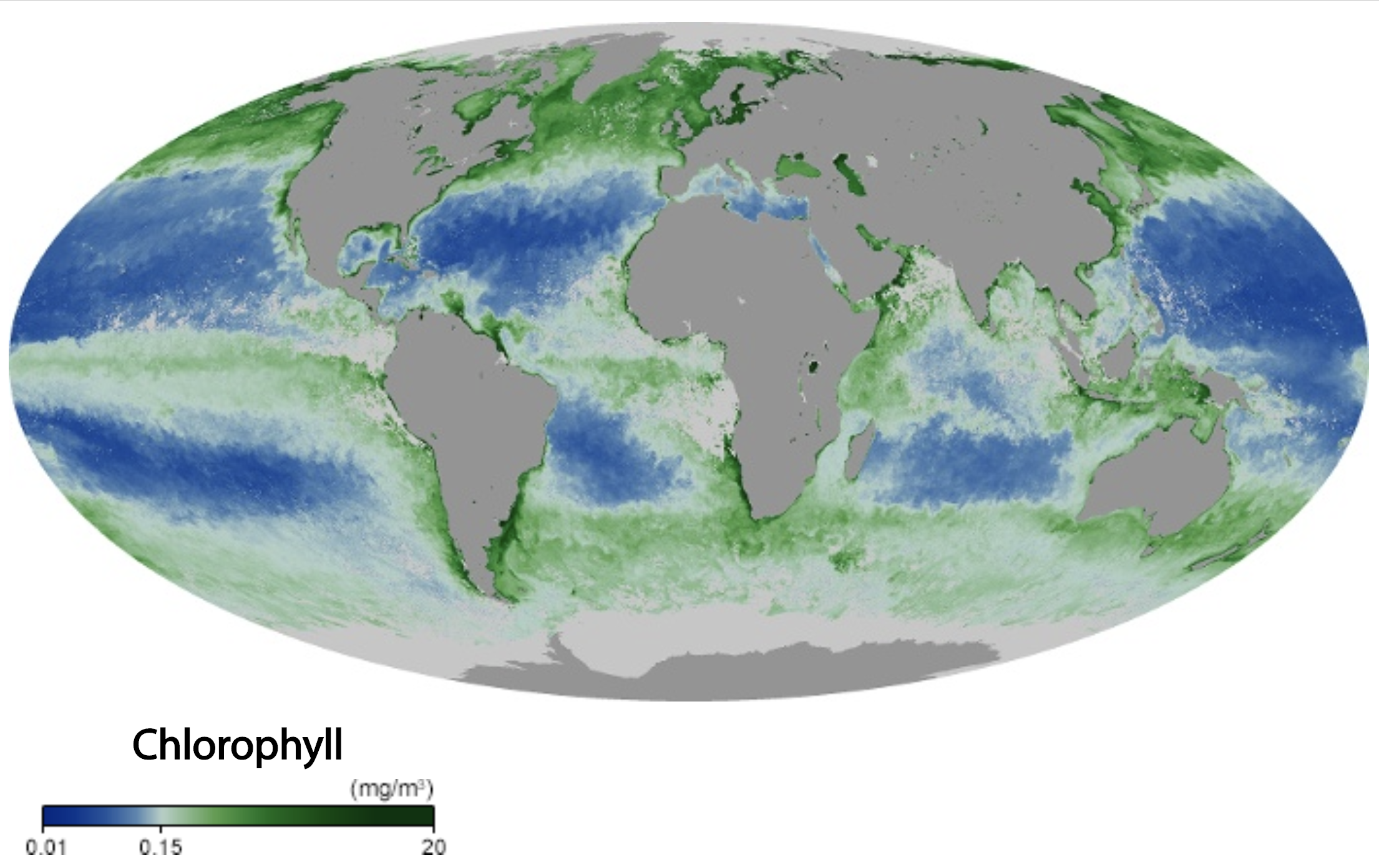 Map showing global marine cholorophyll levels during September 2019.
