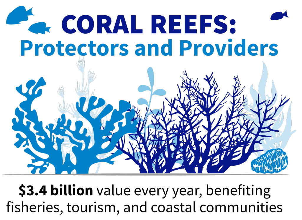 "Info graphic that says ""coral Reefs: protectors and providers. $3.4 billion value every year, benefiting fisheries, tourism, and coastal communities."