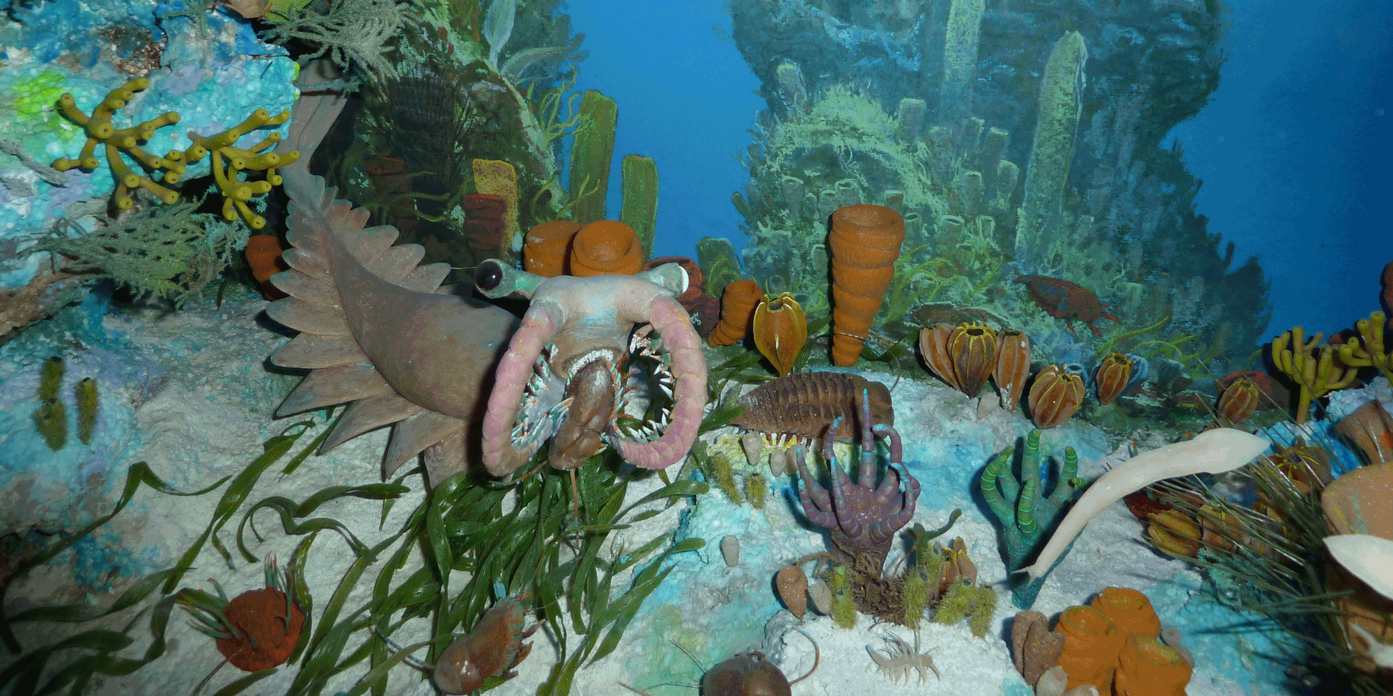 Photograph of a diorama depicting a Cambrian marine ecosystem.