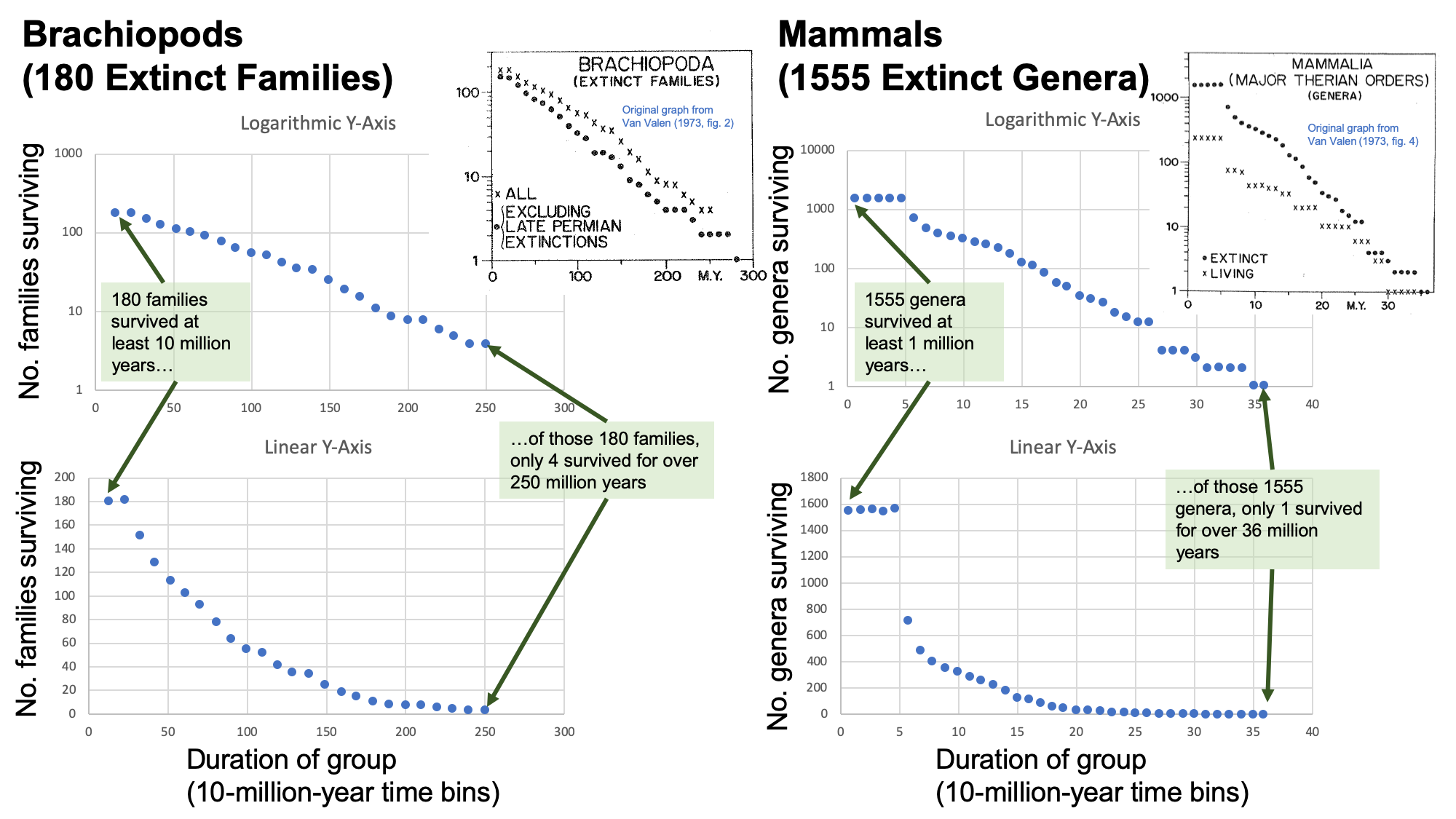 Image showing graphs that compare data derived from Van Valen's 1973 paper, including examples from extinct brachiopod families and extinct genera of mammals.