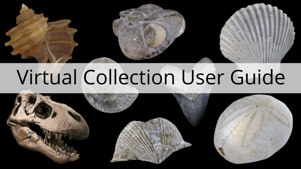 Virtual Collection User Guide
